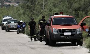 Κίνδυνος πυρκαγιάς: Απαγόρευση κυκλοφορίας στο Εθνικό Πάρκο Σχινιά – Μαραθώνα την Τρίτη (13/8)