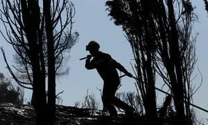 Σε αυτές τις περιοχές απαγορεύεται η κυκλοφορία την Τρίτη (13/08) - Υψηλός κίνδυνος φωτιάς