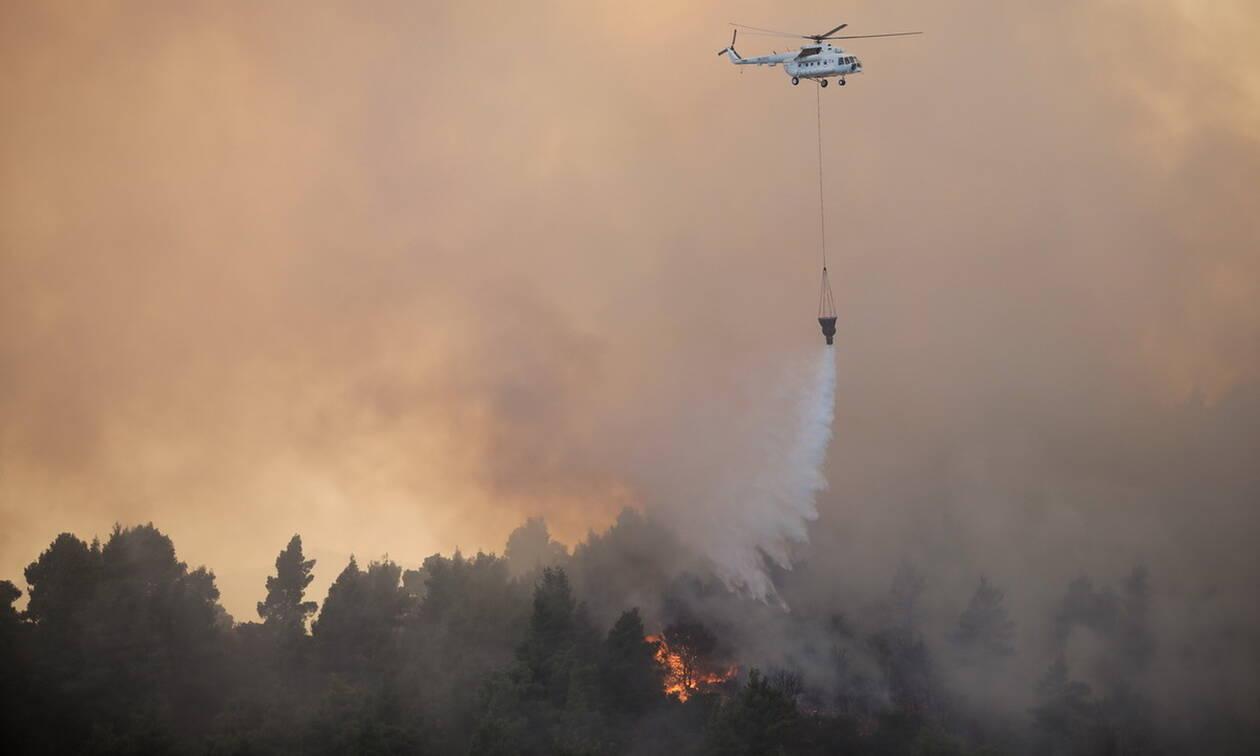 Φωτιά ΤΩΡΑ στην Εύβοια - Μεγάλη πυρκαγιά στην Αγριλίτσα: Ενισχύθηκαν οι πυροσβεστικές δυνάμεις