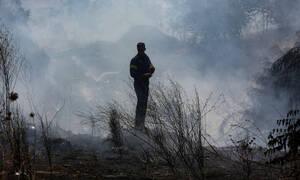 Καλοκαιρινές πυρκαγιές: Φλόγες και στάχτη για να χτιστεί άλλο ένα εξοχικό