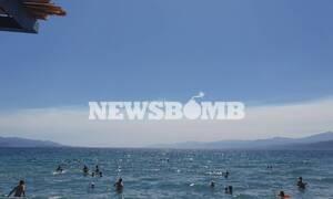 Φωτιά: Απίστευτο και όμως αληθινό - Έφτασαν στην Ναύπακτο οι καπνοί από την Εύβοια και την Θήβα