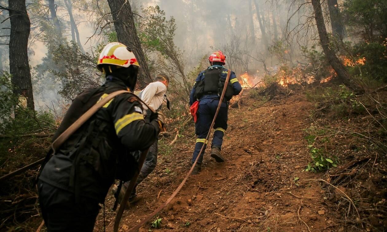 Φωτιά Εύβοια: Σε κατάσταση έκτακτης ανάγκης η δημοτική ενότητα Μεσσαπίων στην Εύβοια