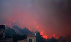 Пожар на Эвбее не удается взять под контроль из-за сильного ветра и аномальной жары
