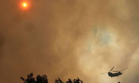 Meteo: Αυτό είναι το χειρότερο σενάριο για τη φωτιά που καίει την Εύβοια