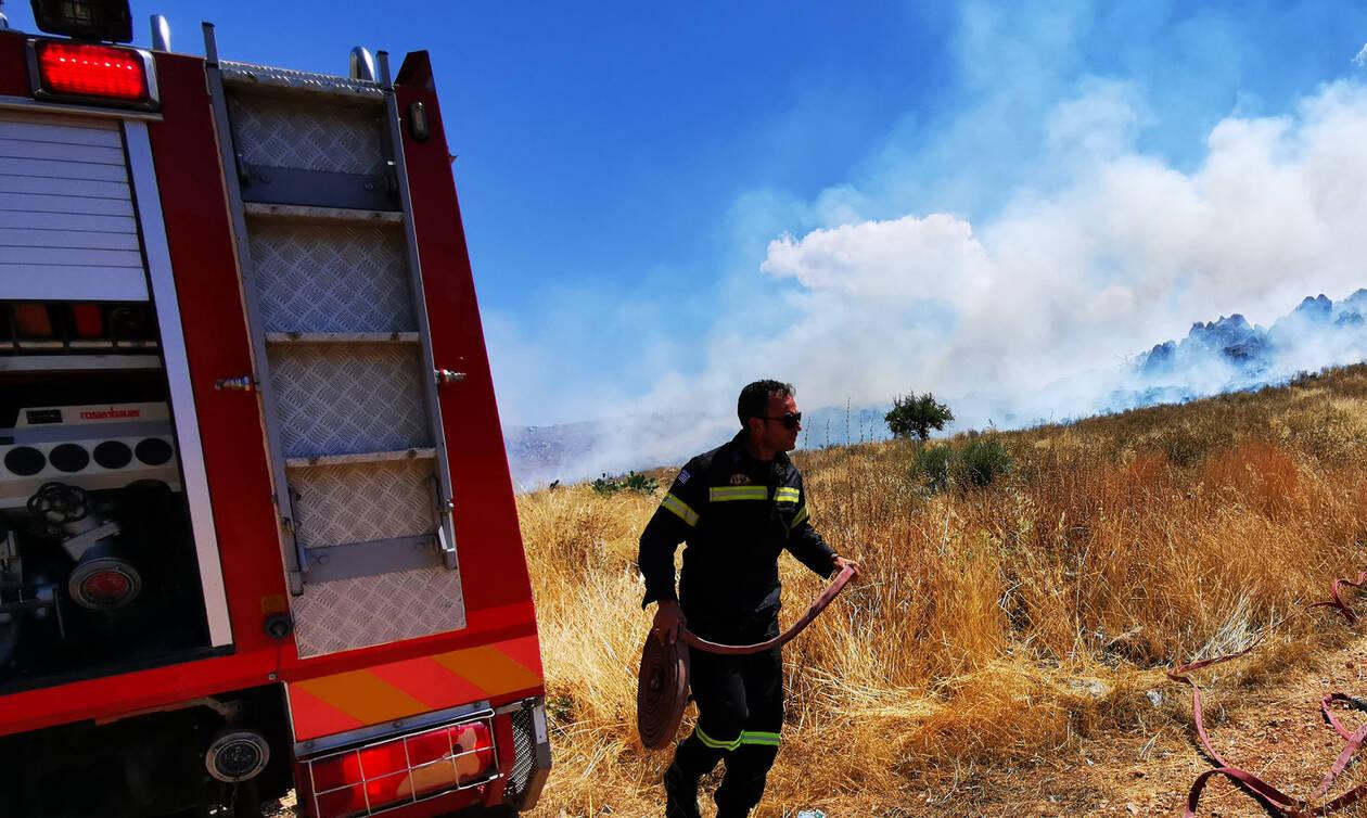 Κιάτο: Υπό έλεγχο η φωτιά στο χωριό Βασιλικό