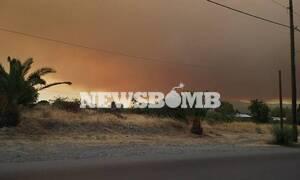 Φωτιά στην Εύβοια: Τραυματίστηκε πυροσβέστης