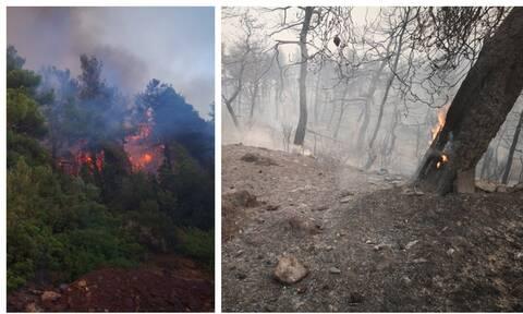 Πύρινος εφιάλτης στην Εύβοια: Εκτός ελέγχου η φωτιά – Εκκενώθηκαν 4 χωριά