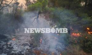 Φωτιά Εύβοια: Δήμαρχος Μεσσαπίων στο Newsbomb.gr – Έρχεται η φωτιά στα Ψαχνά (vid)