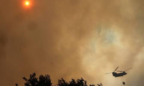 Φωτιά Εύβοια: Αντιπυρικές ζώνες για να περιοριστούν τα μέτωπα της πυρκαγιάς