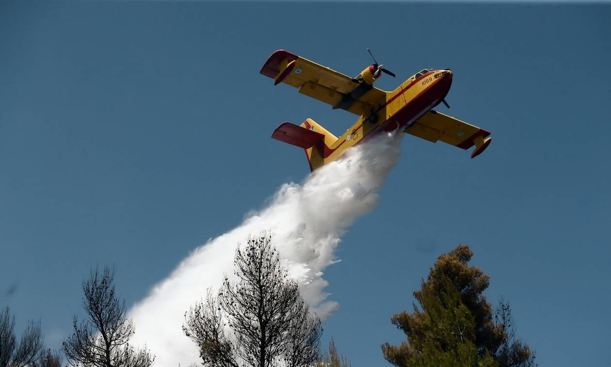 Φωτιά Εύβοια: Στην Ελλάδα τα δύο ιταλικά αεροσκάφη - Εμπλοκή με τα κροατικά