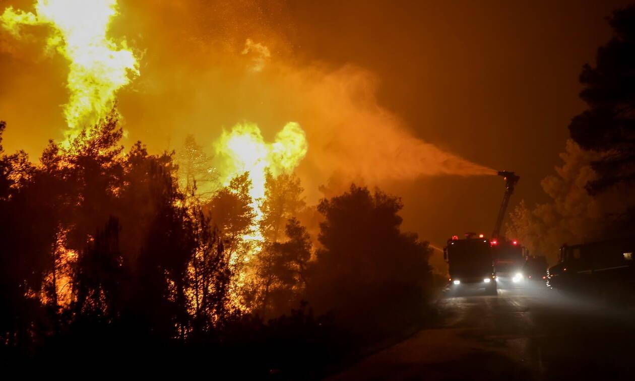 Φωτιά Εύβοια: Νύχτα αγωνίας με «σύμμαχο» τον αέρα  - Όλοι περιμένουν τα εναέρια μέσα