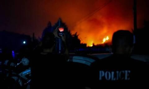 Италия и Хорватия направили самолеты для оказания помощи в тушении пожара на Эвбее