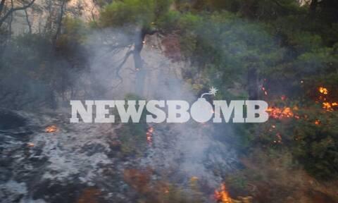 Φωτιά Εύβοια: Συγκλονιστικές εικόνες καταστροφής - Καμένα αυτοκίνητα και περιουσίες