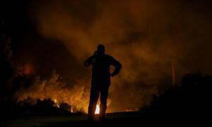 Φωτιά Εύβοια: Οι πρώτες εικόνες μετά την καταστροφή