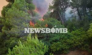 Φωτιά Εύβοια: Στο χωριό Σταυρός κατευθύνονται οι φλόγες - Μάχη με τις αναζωπυρώσεις