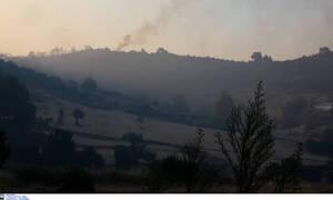 Φωτιά Εύβοια: Πτήση αρχηγού ΓΕΑ με αεροσκάφος CL-215 στα μέτωπα της πυρκαγιάς
