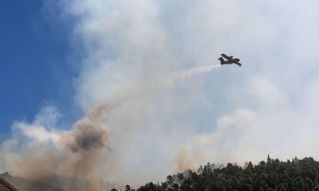 Ανατριχίλα: Τι βλέπει ο πιλότος ενός καναντέρ πετώντας πάνω από τη φωτιά