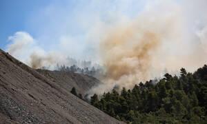 Φωτιά Εύβοια: Βίντεο από το μη επανδρωμένο αεροσκάφος της Πυροσβεστικής κόβει την ανάσα