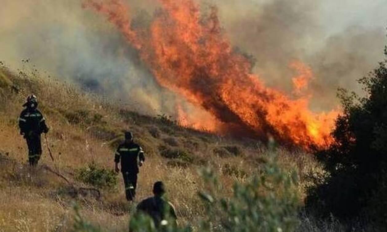 Κύπρος: Φωτιά ΤΩΡΑ σε Αγ. Νάπα και Πρωταρά