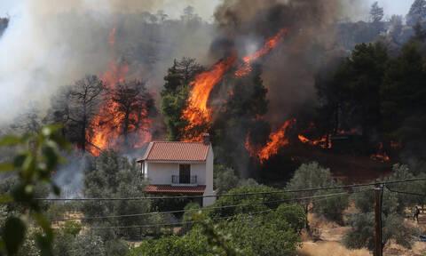 Φωτιά Εύβοια: Νέο πύρινο μέτωπο – Συναγερμός για τις συνεχείς αναζωπυρώσεις