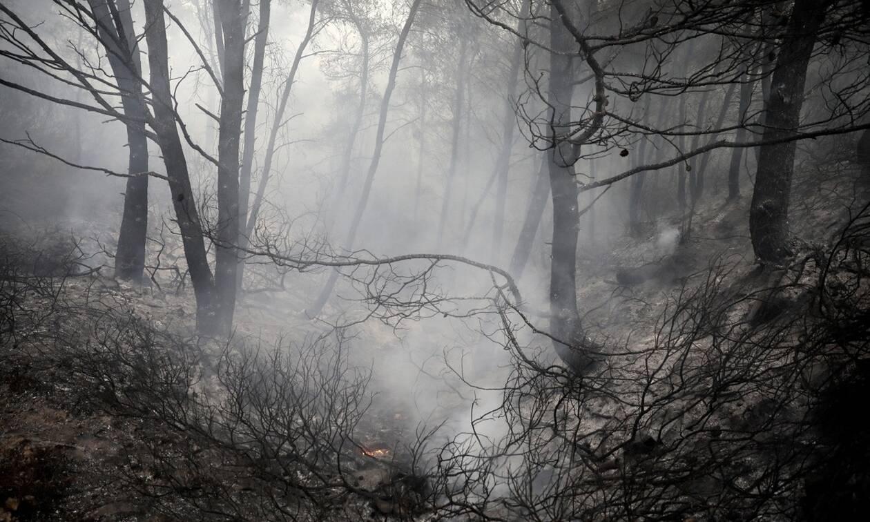 ΙΣΑ: Μέτρα προστασίας από καπνό και υψηλές θερμοκρασίες για έγκυες, παιδιά και ευπαθείς ομάδες