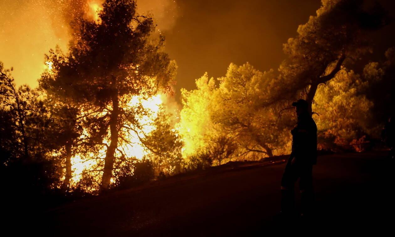 Φωτιά Εύβοια: Δεύτερη νύχτα αγωνίας - Ενισχύονται οι πυροσβεστικές δυνάμεις