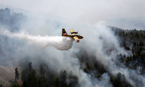Φωτιά Εύβοια: Συνεχίζεται για τρίτη μέρα η καταστροφή - Στη μάχη και πάλι τα εναέρια μέσα