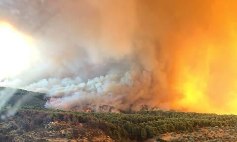 Φωτιά Εύβοια: Η δορυφορική εικόνα που κόβει την ανάσα - 22.680 στρέμματα καμένα μέχρι την Τετάρτη