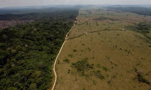 Η Νορβηγία «παγώνει» την καταβολή  35 εκατομμυρίων ευρώ λόγω καταστροφής του Αμαζονίου