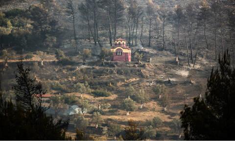 Φωτιά Εύβοια: Τα στοιχεία και οι μαρτυρίες που δείχνουν εμπρησμό – Το προφίλ των τριών υπόπτων