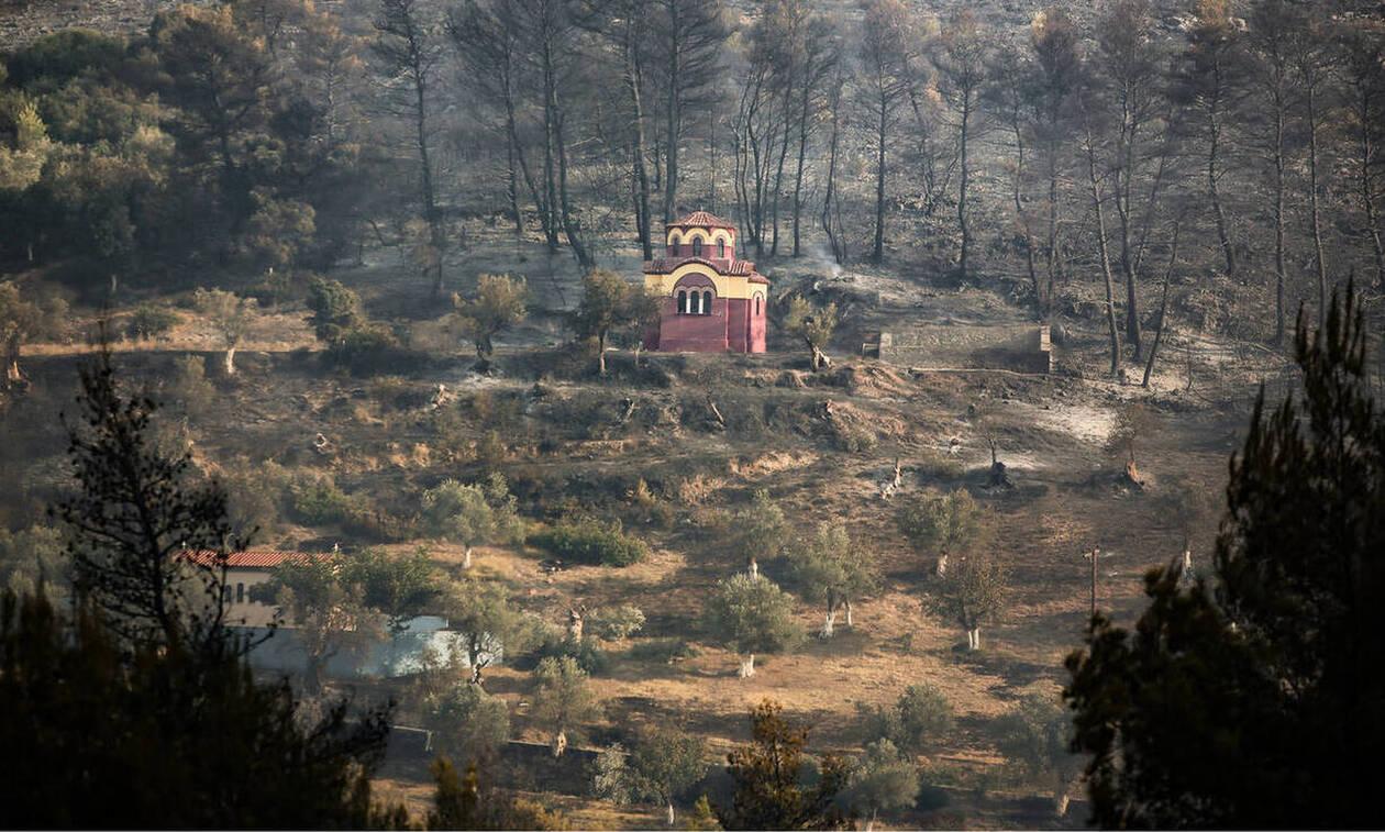 Причиной пожаров на Эвбее стал поджог