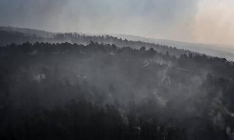 Φωτιά Εύβοια: Σε επιφυλακή για αναζωπυρώσεις η πυροσβεστική - Συνεχίζονται οι έρευνες