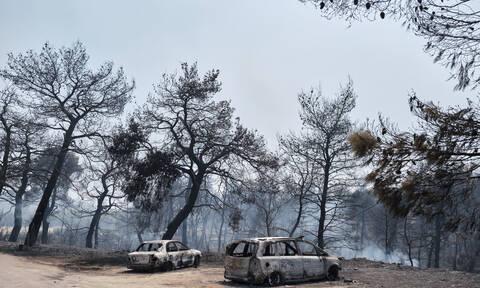 Φωτιά στην Εύβοια: Ραγδαίες εξελίξεις - Άρση τηλεφωνικού απορρήτου ζητούν οι Αρχές