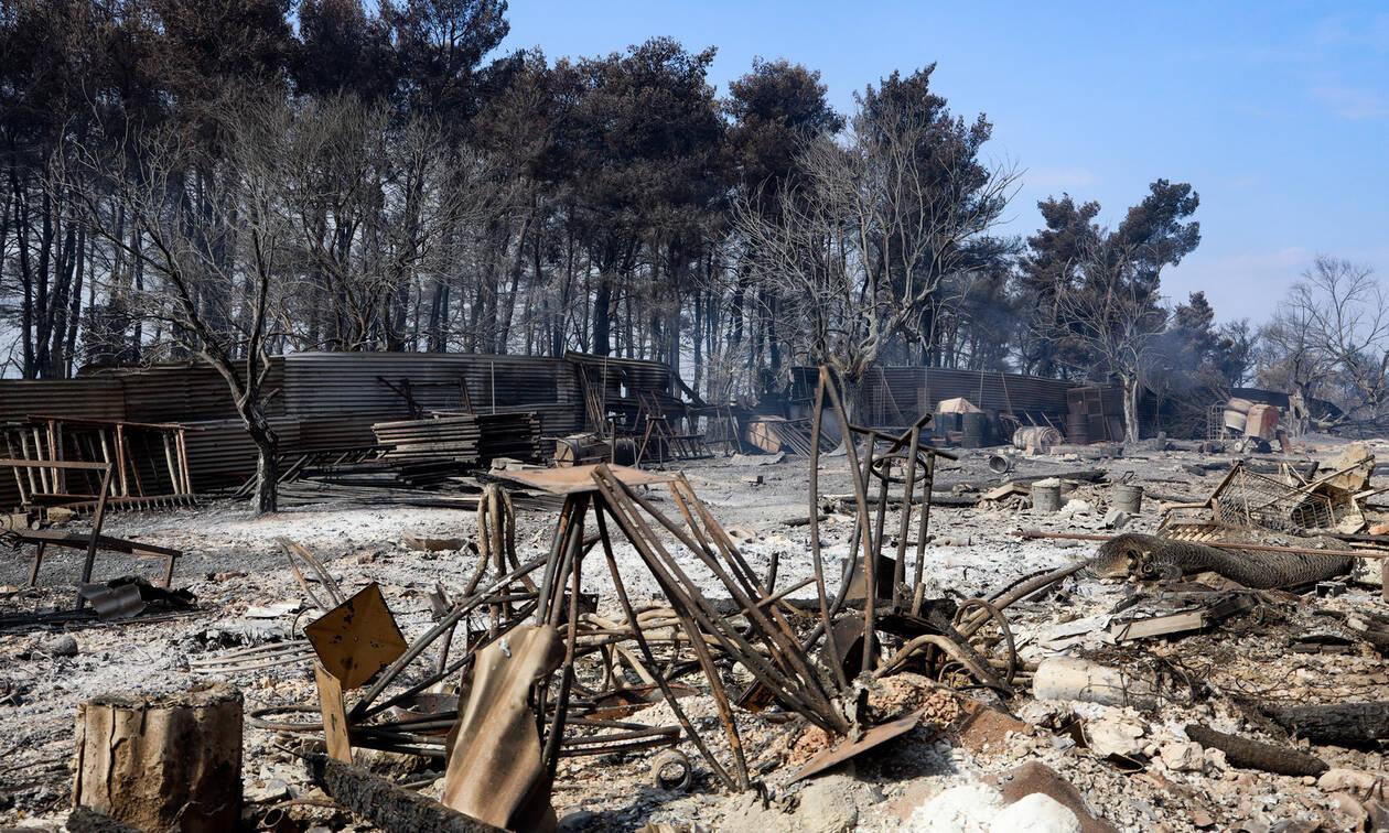Φωτιά στην Εύβοια: Όλα δείχνουν εμπρησμό – Να ανοίξουν τηλέφωνα ζητούν οι Αρχές