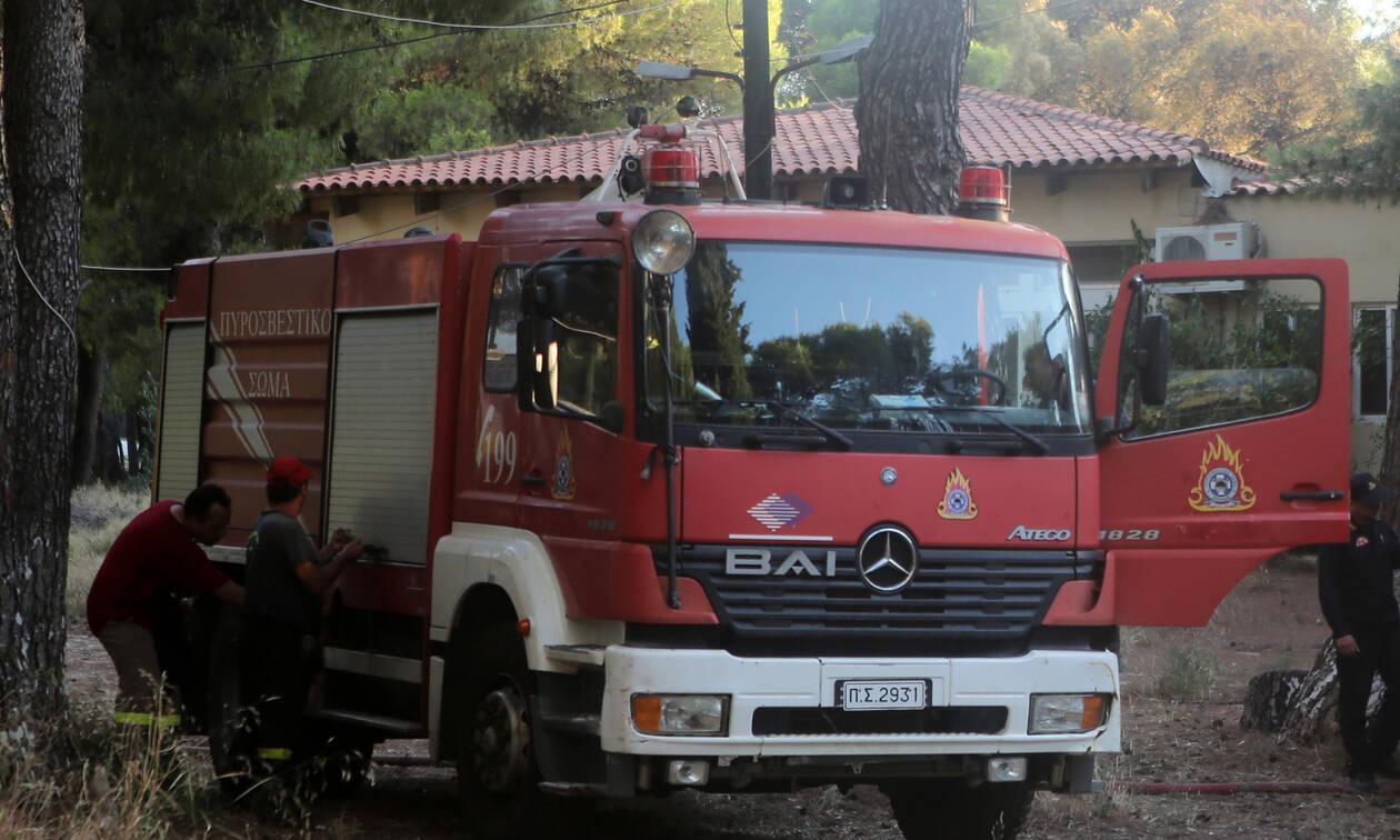 Φωτιά ΤΩΡΑ: Μεγάλη πυρκαγιά στα Ιωάννινα