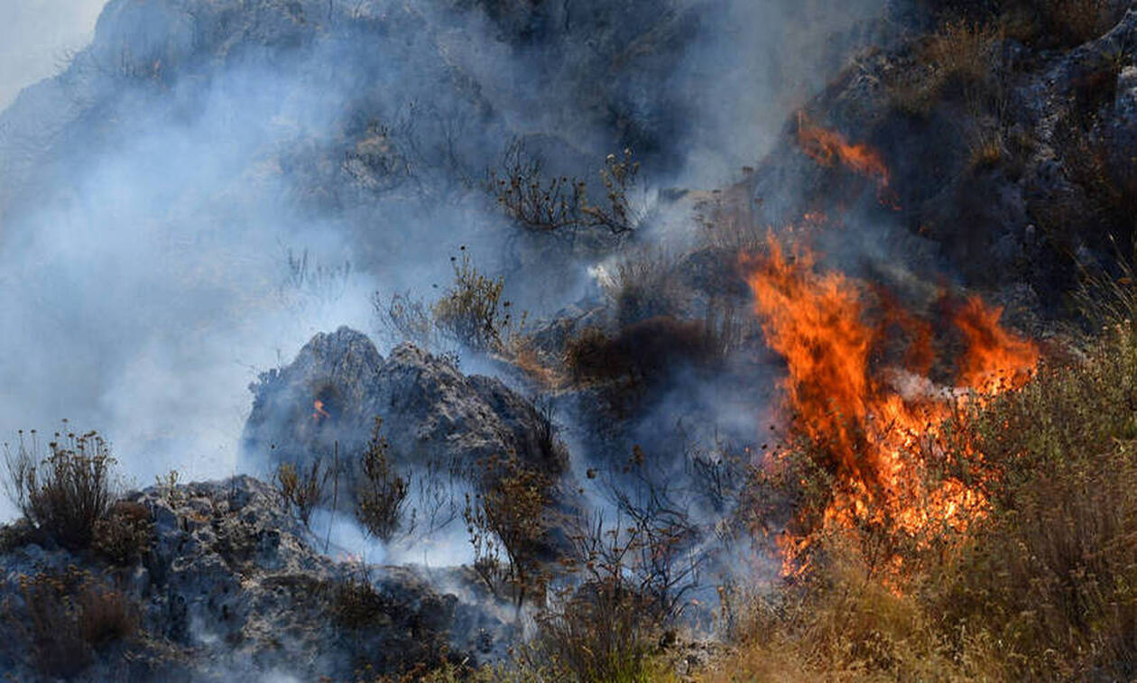 Φωτιά ΤΩΡΑ στην Μάνδρα Αττικής