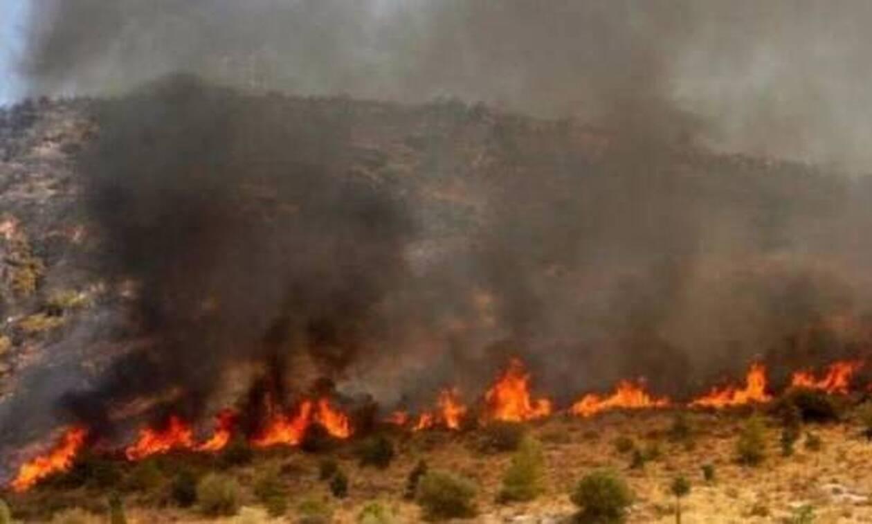 Κύπρος: Μεγάλη φωτιά στον Ακάμα
