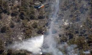 Κύπρος: Υπό πλήρη έλεγχο η πυρκαγιά στην Λάρα