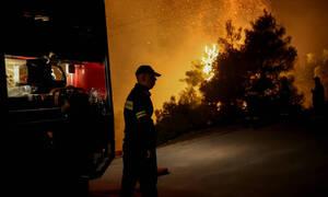 Ρέθυμνο: Υπό μερικό έλεγχο η φωτιά στον Άγιο Βασίλειο