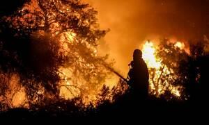 Φωτιά στην Εύβοια: Εμπρησμός κατά 99% - Καταρρίπτεται το άλλοθι του βασικού υπόπτου (vid)