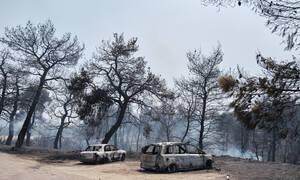 Φωτιά στην Εύβοια: Το κινητό «καίει» τον 33χρονο – Συνεχίζονται οι ανακρίσεις από την Πυροσβεστική