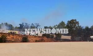Φωτιά Χαϊδάρι: Υπό έλεγχο τέθηκε η πυρκαγιά που εκδηλώθηκε κοντά σε κατοικημένη περιοχή (pics)