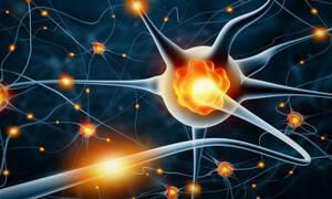 Σκλήρυνση κατά πλάκας: 13 παράδοξα συμπτώματα της αυτοάνοσης πάθησης (εικόνες)