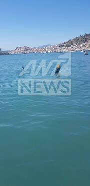 Έπεσε ελικόπτερο στον Πόρο - Έρευνες των Αρχών για επιζώντες