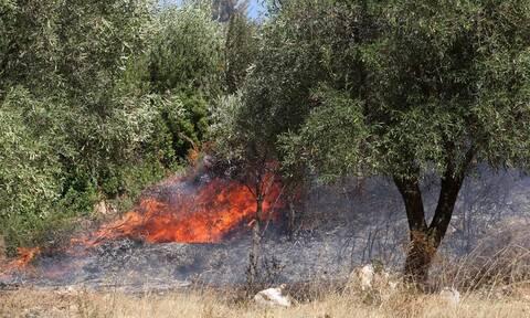 Φωτιά ΤΩΡΑ στην Πάργα - Συναγερμός στην Πυροβεστική