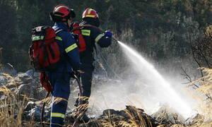 Πάργα: Υπό μερικό έλεγχο η φωτιά στη Κορώνη