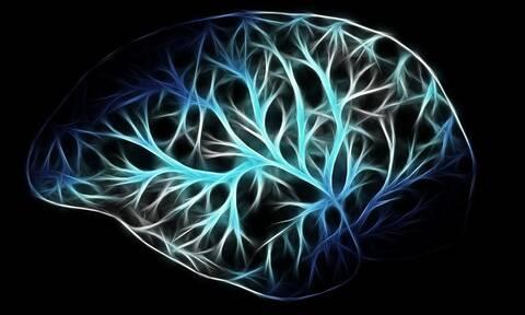 Ανακαλύφθηκε άγνωστο όργανο στο ανθρώπινο σώμα – Δείτε πού βρίσκεται και τι κάνει (pics)