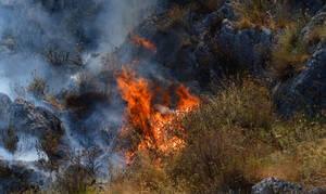 Φωτιά ΤΩΡΑ: Μεγάλη πυρκαγιά στο Δομοκό