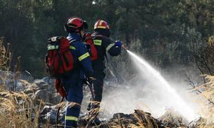 Φωτιά ΤΩΡΑ: Μεγάλη πυρκαγιά στην Παιανία