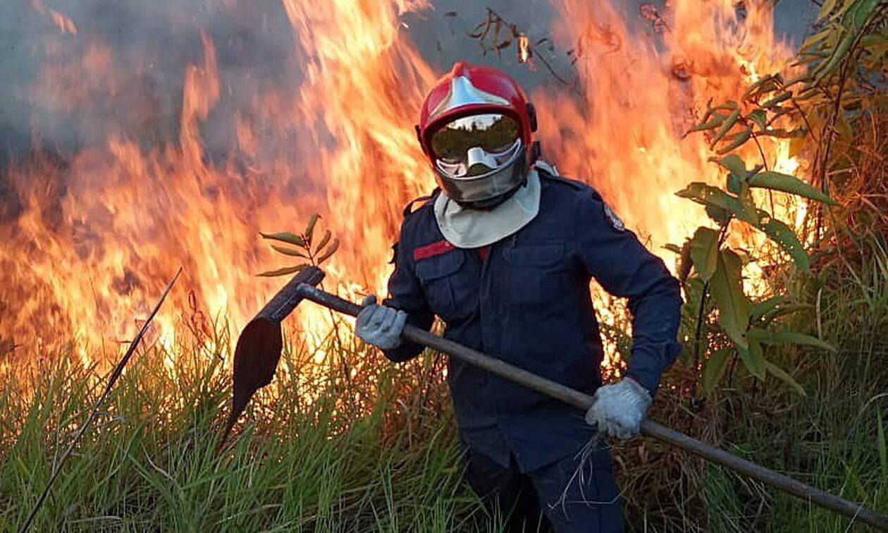 Έγκλημα στον Αμαζόνιο: Φωτογραφίες - εφιάλτης από τον όλεθρο